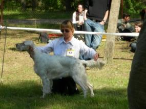 gostynin-2006-2