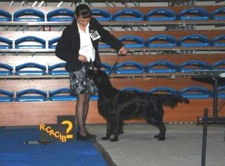 rzeszow-2011-4